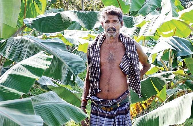 Neduvasal prefers soil over oil- The New Indian Express