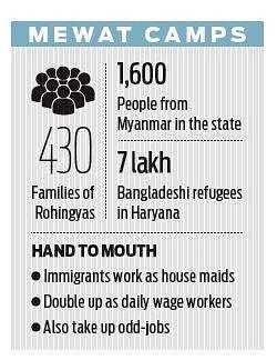 Haryana mulls NRC to weed out Rohingyas, Bangladeshis