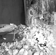 Laxmi-Puja