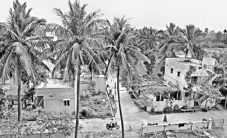 Sri-Venkateshwara-Nagar
