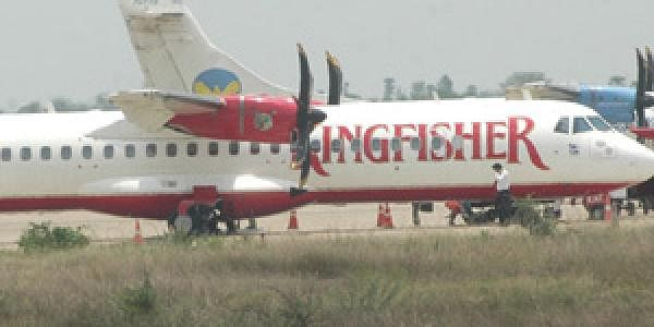 Kingfisher_eps_b