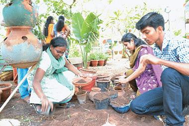 farming-project