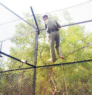 Zoo-officials