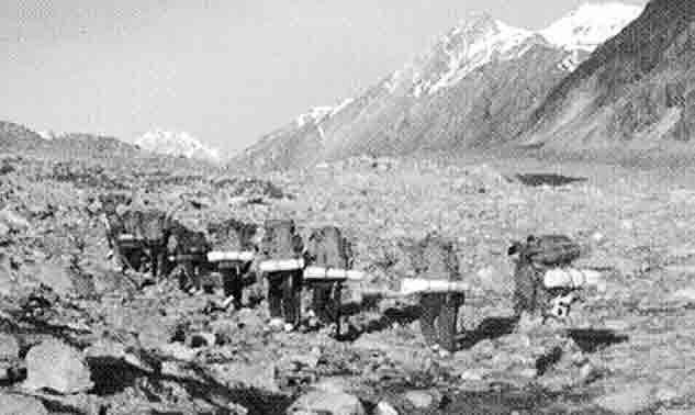 Dhakka-Glacier-site