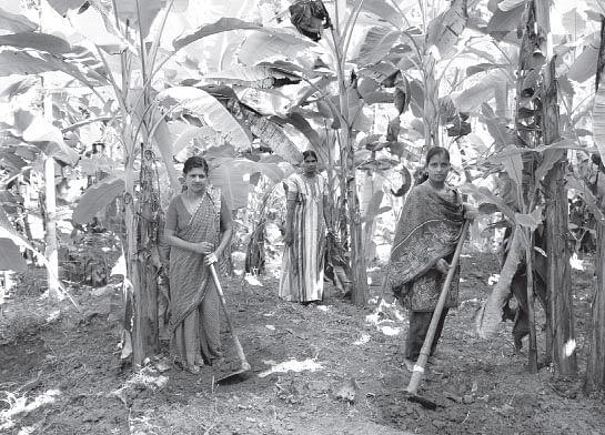 Kayanna-grama-panchayat