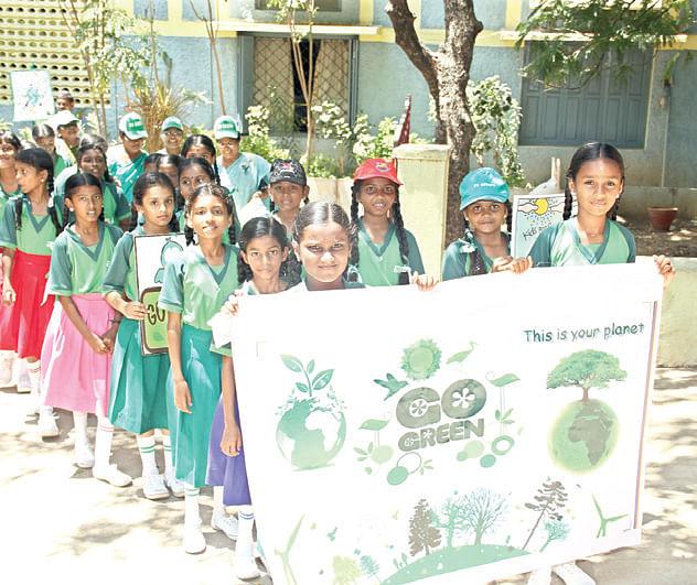 Celebrating-Green-Day