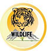 wildlife.JPG