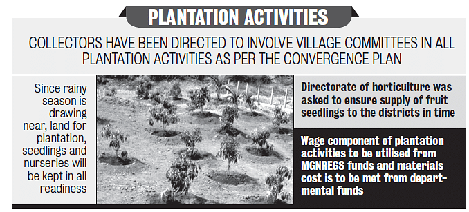 PLANTATION ACTIVITIES.PNG