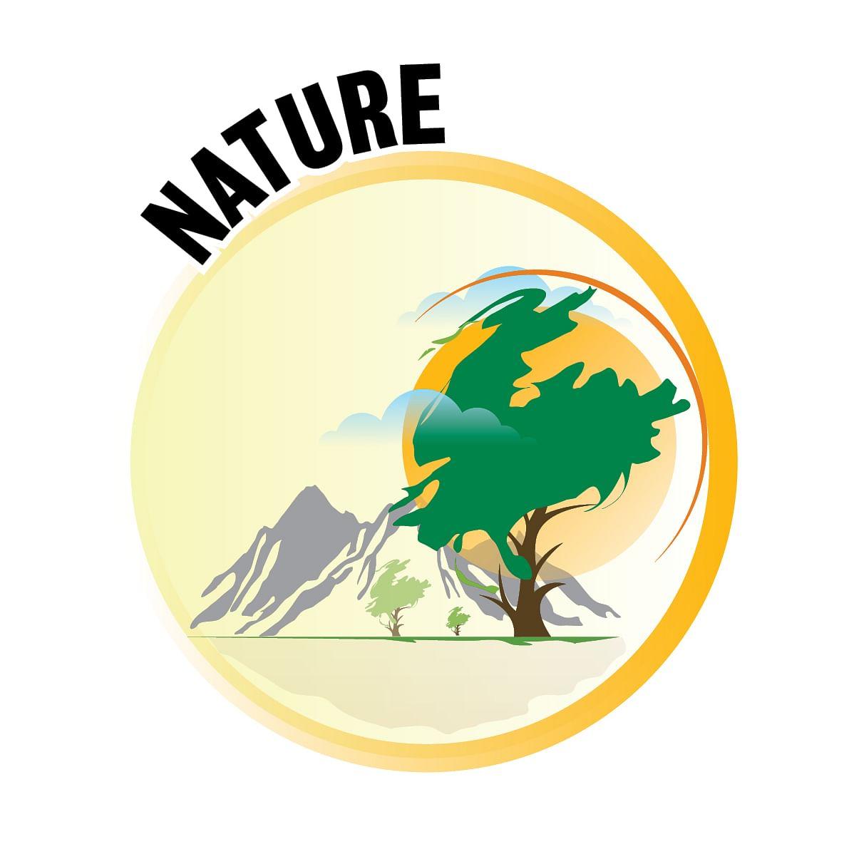 Nature.jpg