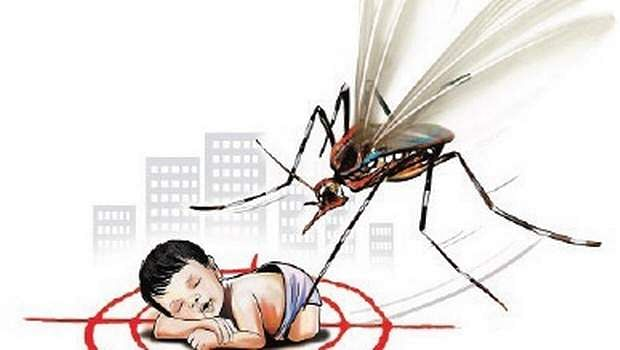 Health Minister rushes to Japanese Encephalitis hit Malkangiri