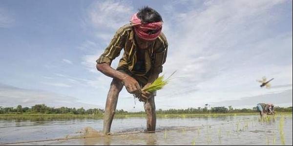 Farmer_Reuters