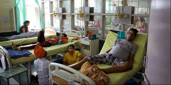India_Mosquito_DENGUE2_chikungunya_AP