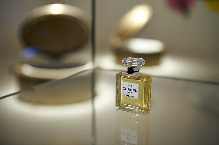Chanel: Train across jasmine fields threatens perfume-making
