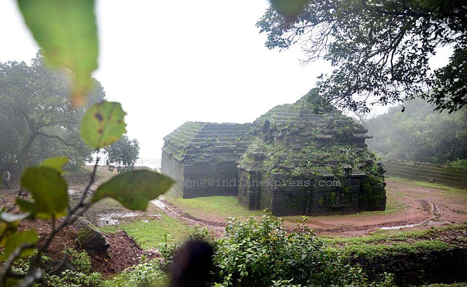 Krishnabairevealed1.jpg