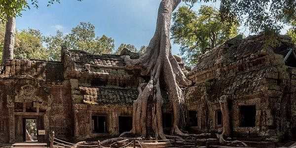 Ta Prohm temple, Cambodia. (Photo courtesy: CEphoto, Uwe Aranas @ wikimedia.org)