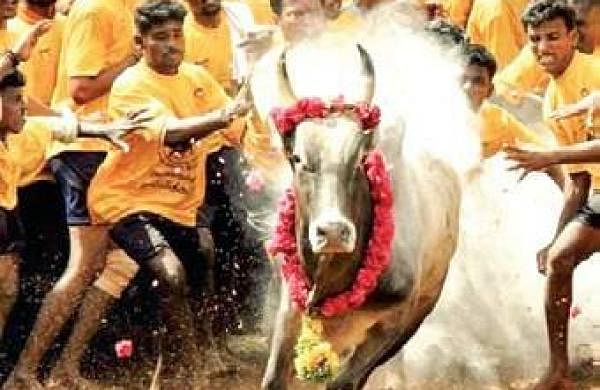 To protect Indian culture, protect gau: Adityanath at meeting of cow vigilantes