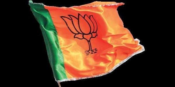 BJP lotus,