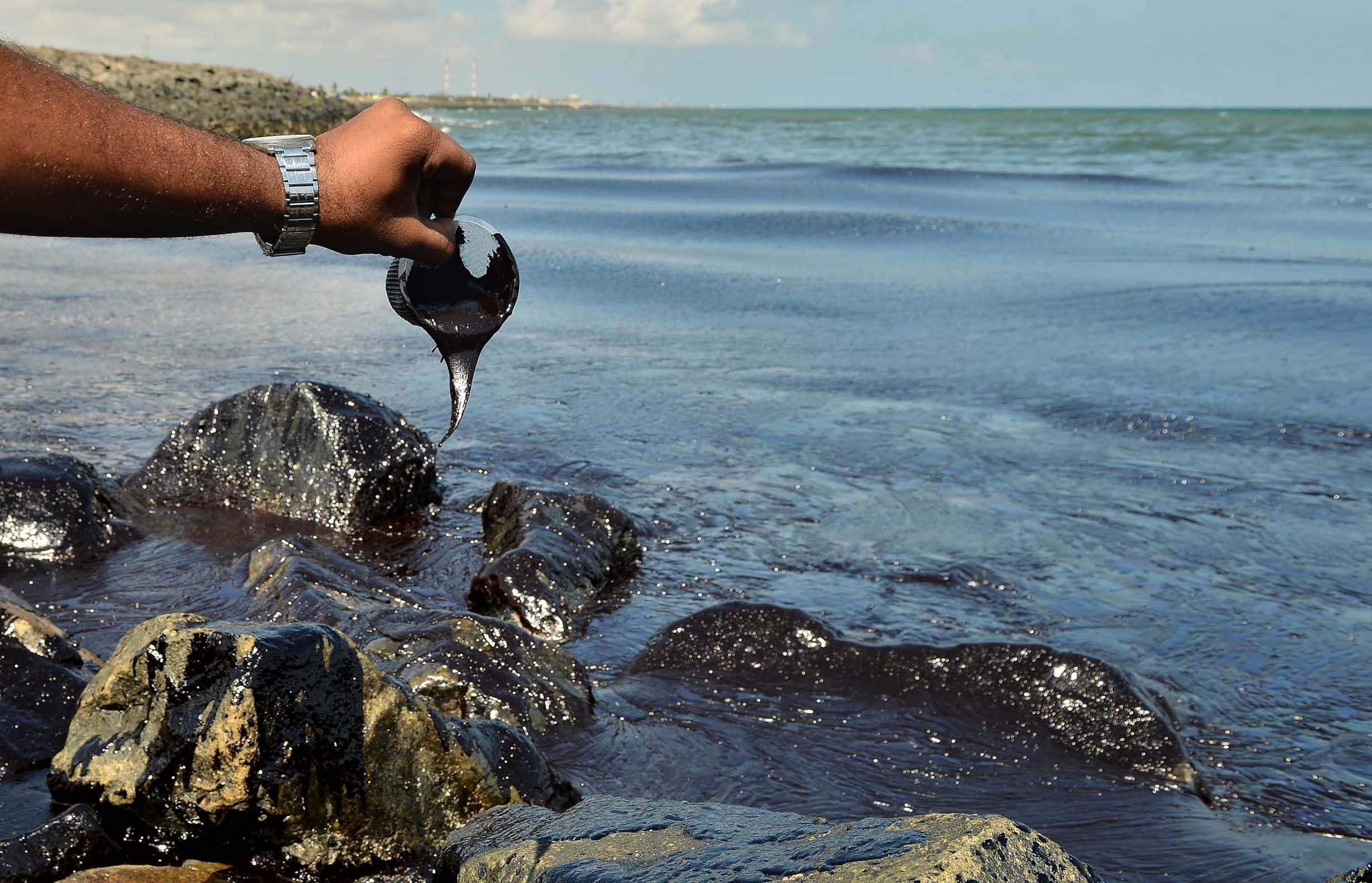 Oil Spill in Tamil Nadu threatens marine life including turtles