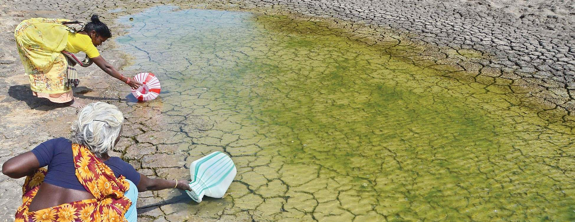 Image result for 'Drought in Tamil Nadu mostly man-made'