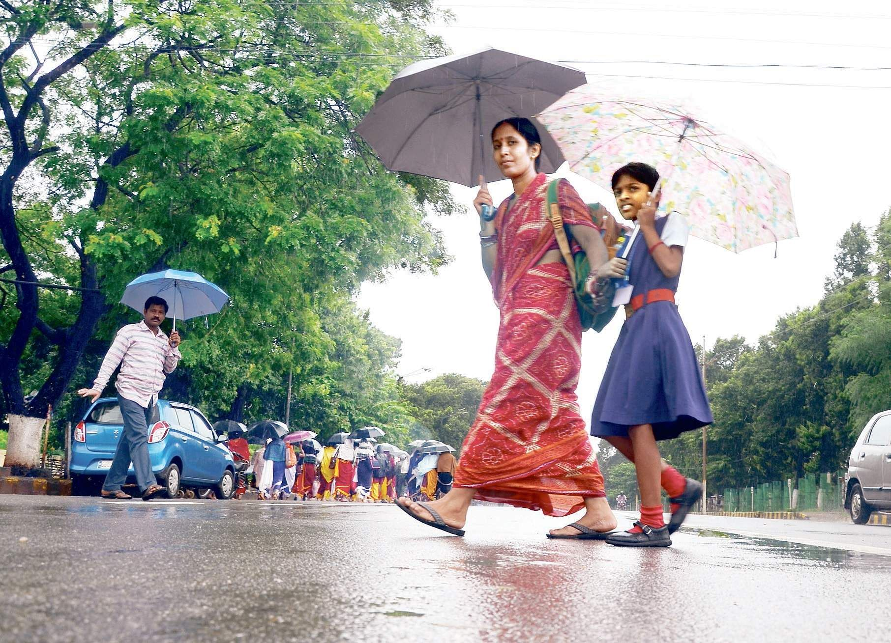 Rain expected in districts of Odisha during next 12 hours: Meteorological Centre