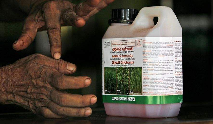 Week of pressure on EU's institutions to ban Glyphosate