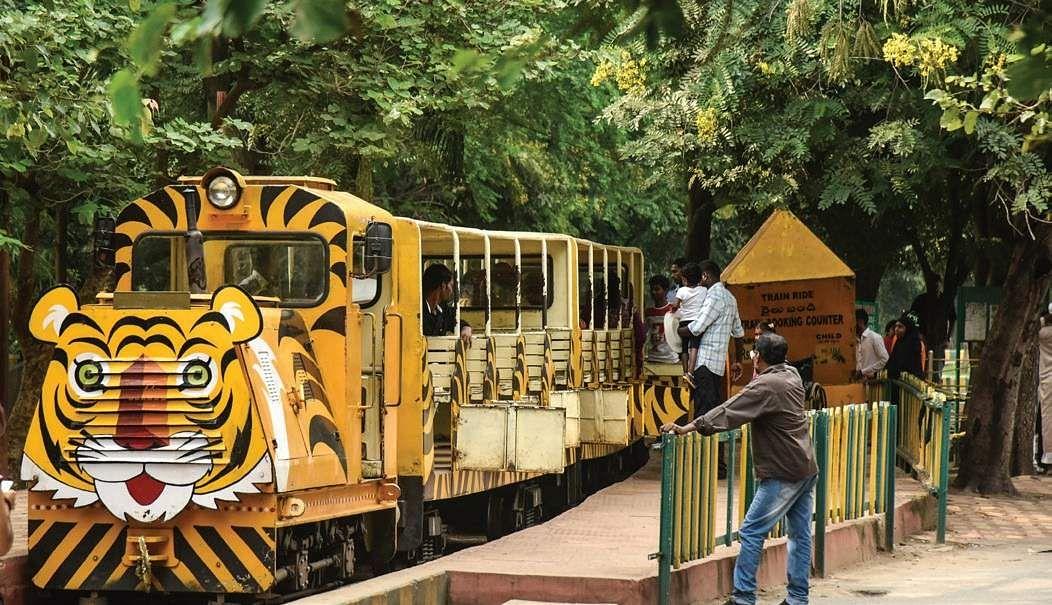 Image result for nehru zoological park