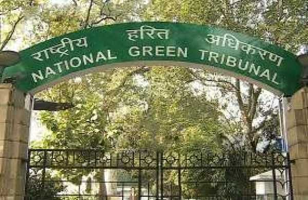 The National Green Tribunal (File Photo)
