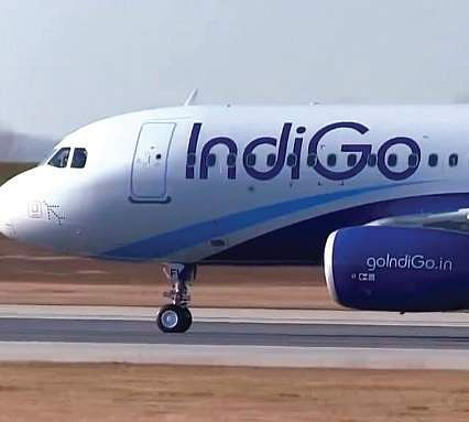 indigo airlines essay Download pdf of latest interview questions of indigo airlines with answers for  ground staff cabin crew placement criteria of indian airlines,.