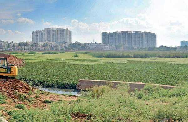 A large portion of Sarakki lake in JP Nagar, which is one of the largest lakes in the city, is encroached | Pushkar V