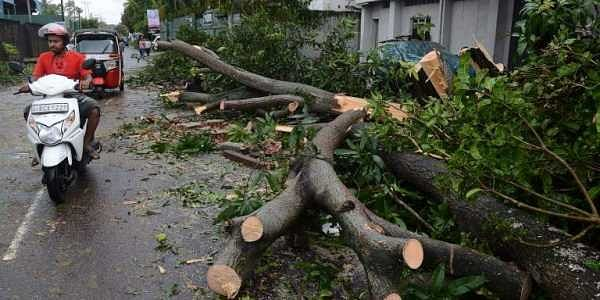 A major storm left three dead, two missing and more than a dozen injured across Sri Lanka, authorities said on November 30, as powerful winds toppled trees and damaged buildings.   AFP