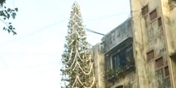 Mumbai Family Grows 65 Feet Tall Christmas Tree- The New