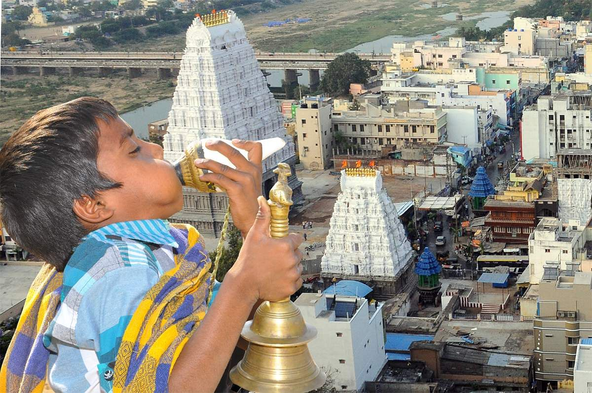 A little boy blows the conch as the Srikalahasti temple is seen in the background, on the occasion of Maha Shivaratri ( Express Photo Service)