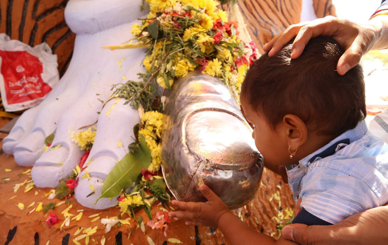 A kid kisses the foot of Lord Shiva statue on the occasion of Maha Shivaratri. (Shimoga Nandan | EPS)
