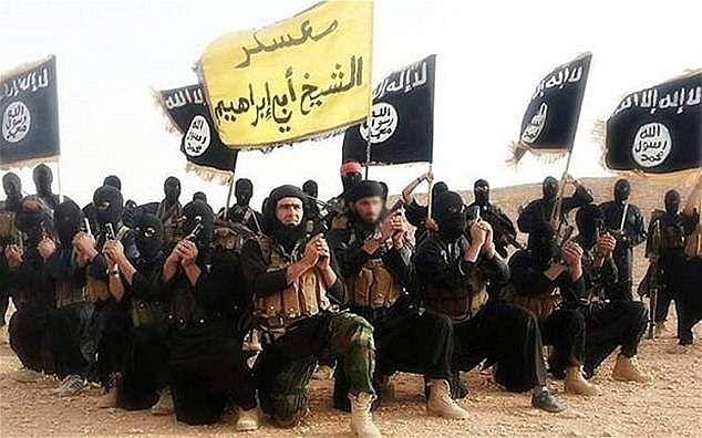 Islamic state, representational image,