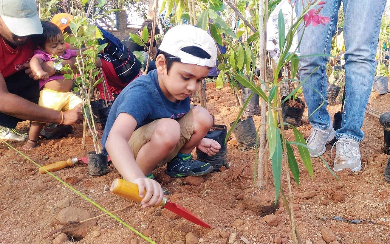 6,000 fast-growing trees planted in a day- The New Indian ...