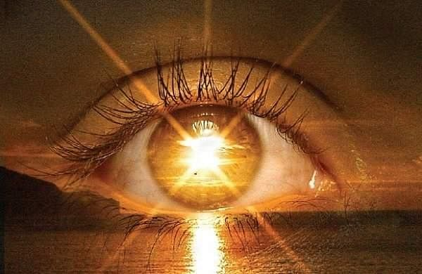 New nano-implant may help restore sight- The New Indian ...