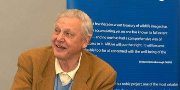 British naturalist David Attenborough (File | Wiki)