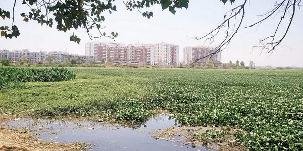 BBMP budget earmarks funds for lake conservation. The citizens are sceptical though.