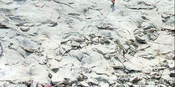 granite quarry in india