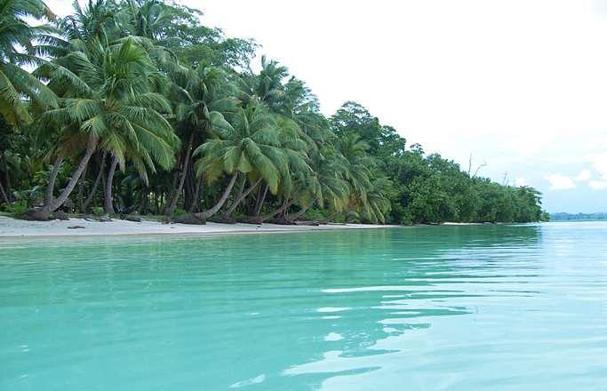News Havelock Island