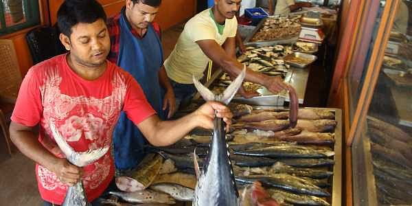 The ulk of Keralites who cannot do with fish of some kind on their daily platter will not be too interested in the fine print.