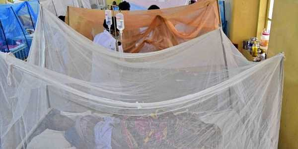 This year, everything went out of gear with a vigorous attack of Dengue and H1N1 fever, and 47 persons died due to dengue and other fevers this month alone. | BP Deepu