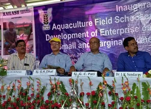 fresh water prawn culture cashflow analysis This paper deals with production systems, cost structure, and profitability of  freshwater prawn, macrobrachium rosenbergii, farming in a new.