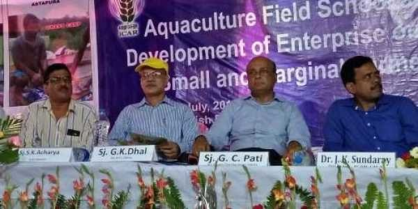 Aquaculture school to train fish farmers of State- The New