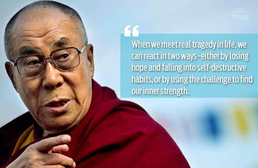 the life of the dali lama essay Buddhism and dalai lama essay because they believe the animal might be a temporary home of a human spirit but now, buddhists do eat meat or fish and other animals.