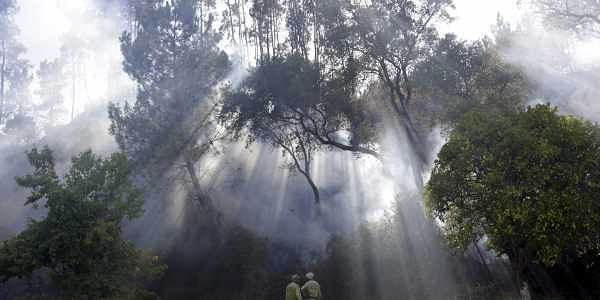 Some 1,800 firefighters were trying to douse around 10 fires across the country, authorities said.
