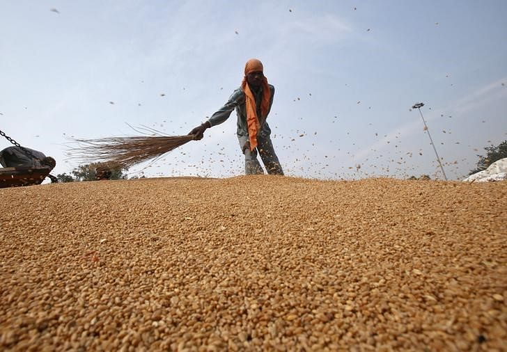 Govt revises up 2016-17 grain output to record 275.68 mn ton