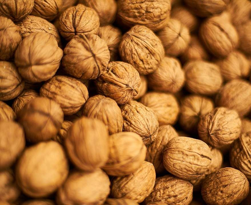Eating walnuts may help control appetite