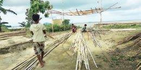 Bamboo looks to regain its glossy status- The New Indian Express