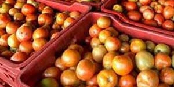 Sundargarh Deputy Director of Agriculture RN Satpathy said shortage in supply of vegetables from July to September due to monsoon rain is common leading to price hike.